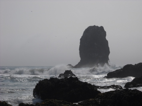 Oregon Coast; picture taken by migrantthoughts